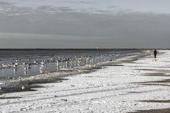 A woman walks along a snowy beach stock photos