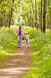 The woman walks with a dog Stock Image
