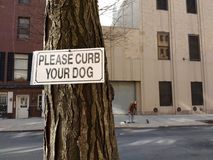 Curb Your Dog, Dog Walker, NYC, NY, USA. A woman walks her dogs in New York City. Posted on a nearby tree is a sign that says, `Please Curb Your Dog`. This photo Stock Image
