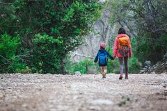 A woman walks with her son through the forest stock images