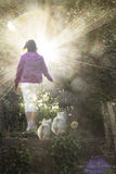 Woman walks her two dogs in heaven Royalty Free Stock Photo