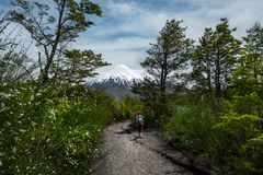 Woman walks on the hiking trail Royalty Free Stock Image