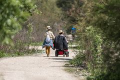 A woman walks with a man in wheelchair by nature stock photo