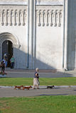 A woman walks three dogs by Dmitrievsky cathedral in Vladimir, Russia. Stock Image