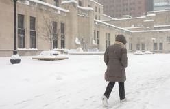Free Woman Walks To Work In Winter Snowstorm Downtown Chicago Stock Photos - 110114543