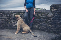 Woman by wall with Leonberger puppy Royalty Free Stock Photos