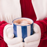 Woman in warm gloves holding cup of hot chocolate with marshmall Stock Photography
