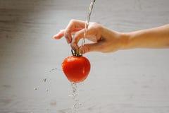 Woman washes a tomato royalty free stock photo