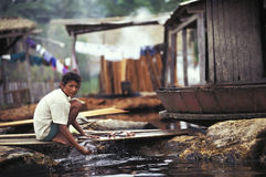 Woman washing fish, Amazon, Brazil. Woman cleaning the fish along the Rio Purus in the Amazon. Labrea, Amazonas, Brazil Royalty Free Stock Images