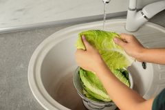 Woman washing leaf of savoy cabbage under tap water in kitchen sink. Closeup royalty free stock photos
