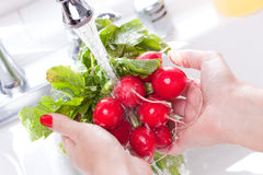 Woman Washing Radishes Stock Photography