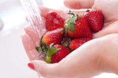 Woman Washing Strawberries Stock Photos