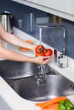 Woman washing tomatoes at kitchen sink Royalty Free Stock Images