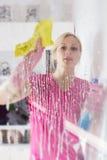 Woman washing the window glass. Young woman washing the window glass Royalty Free Stock Image