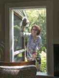 Woman washing window Royalty Free Stock Photos