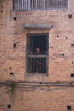 He woman watch from a window Royalty Free Stock Images