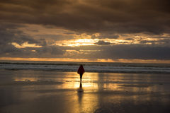Woman watching sunset at the beach Royalty Free Stock Image