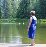 A woman watching swans Royalty Free Stock Images