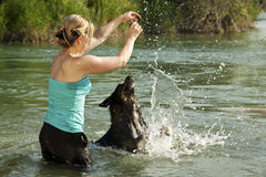 Woman in water animated dog to play. Pretty woman in water animated dog to play Stock Photo