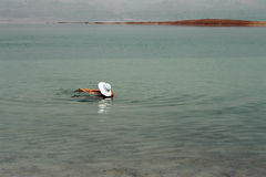 Woman in the water of the Dead sea Israel Stock Image