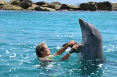 Woman in water with dolphin Stock Photography