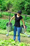 Woman watering crops Royalty Free Stock Photo