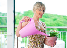 Woman watering flower plant Stock Photo