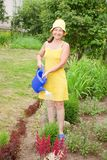 Woman watering flowers Stock Photography