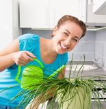 Woman watering flowers Royalty Free Stock Image