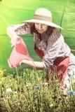 Woman watering flowers in garden Royalty Free Stock Image