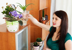 Woman watering  flowers in pots Royalty Free Stock Images