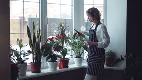 Woman watering flowers with a spray gun stock footage