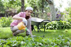 Woman watering the garden bed Royalty Free Stock Photos