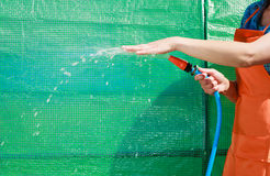 Woman watering the garden with hose Stock Image