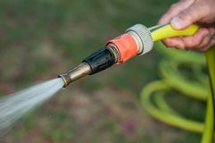 Woman watering garden with hose in summer. Closeup of woman watering garden with hose in summer royalty free stock photo