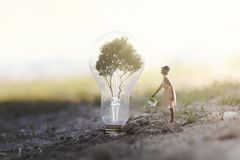 Woman watering her plant that needs energy to a light bulb. Surreal image of a woman watering her plant that needs energy to a light bulb stock images