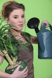 Woman watering a houseplant Stock Photography