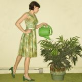 Woman watering plant. Stock Images
