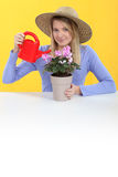 Woman watering plant. Woman tending to her plant Royalty Free Stock Image