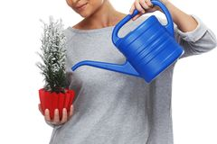 Woman watering plant Stock Images