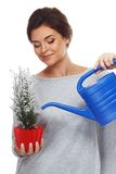 Woman watering plant in pot Stock Photography