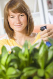 Woman watering plants Royalty Free Stock Image