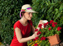 Woman watering plants Stock Images