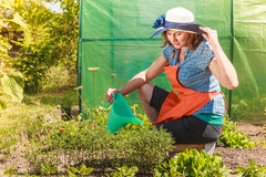 Woman watering plants in garden Stock Images