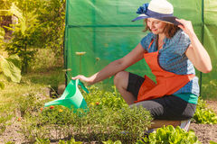 Woman watering plants in garden Stock Photography