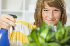 Woman watering plants at home Stock Image