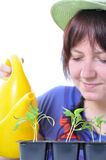 Woman watering plants with watering can Stock Photo