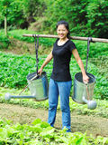 Woman watering vegetable Royalty Free Stock Photos