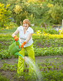 Woman watering  with  watering pot Royalty Free Stock Photography