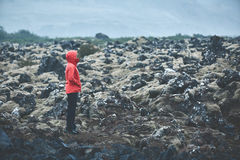 Woman hiker walks on volcanic Lava fields on background of mountains of Iceland. Royalty Free Stock Images